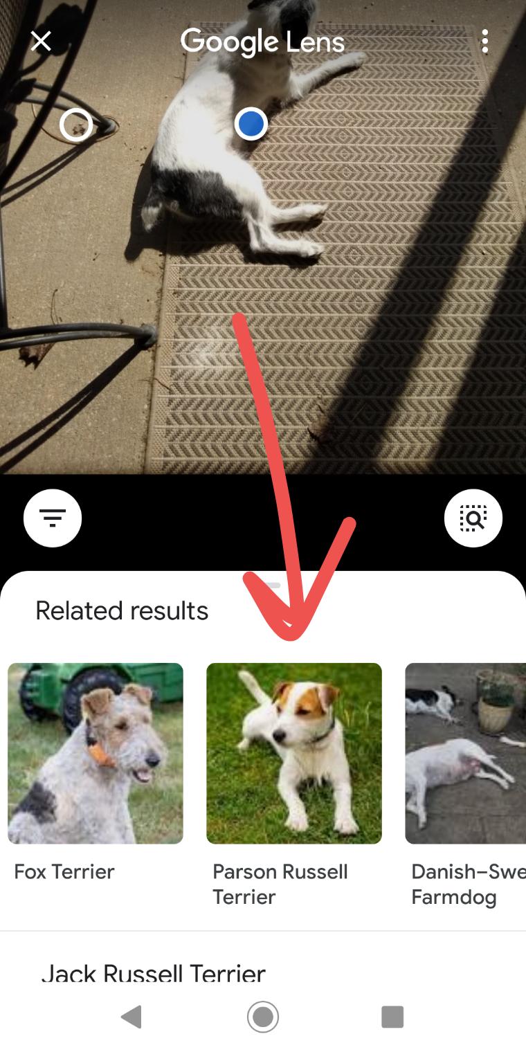 Correct, Google!